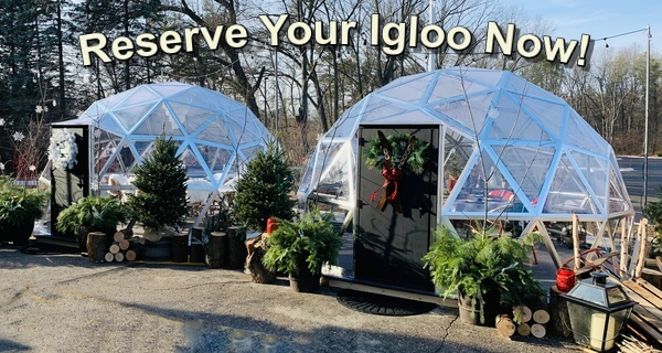 Reserve Your Igloo